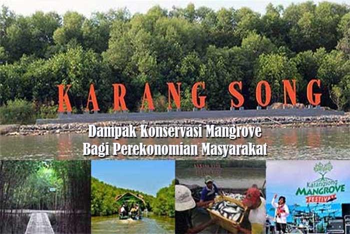 Konservasi Mangrove Bagi Perekonomian Masyarakat