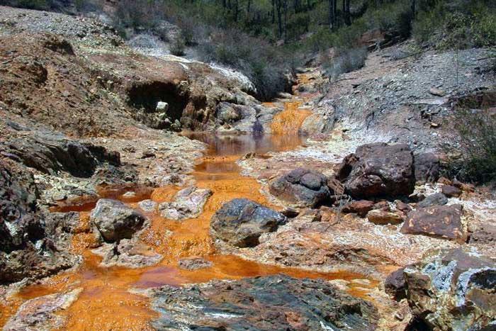Dampak dan Penyebab Kontaminasi Tanah