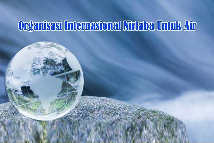 Organisasi Internasional Nirlaba Untuk Air